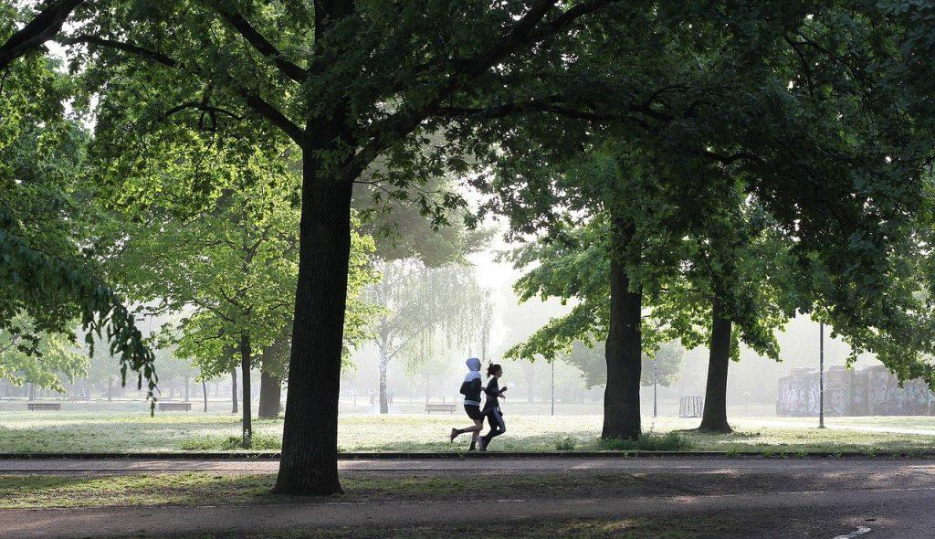 bieganie aktywność